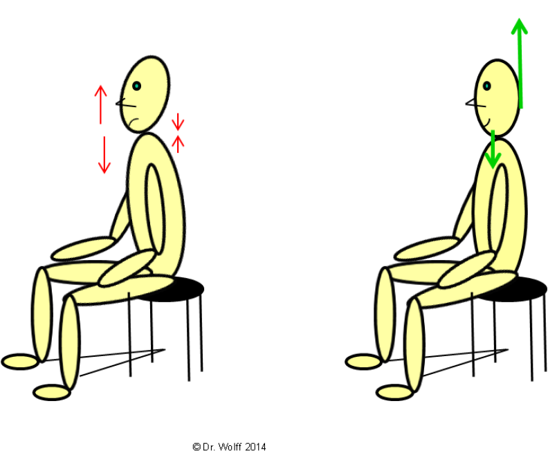 Dr, Wolff - Head and body position