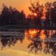 Sonnenuntergang in Bialoweza
