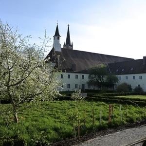 Klostergarten im Frühling; Foto: CMR