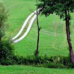 Umgebung von Eggenfelden; Foto: CMR
