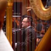 mit den Wiener Philharmonikern in Budapest,  Photo: Filip Waldmann, 25.11.2016