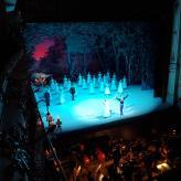 """Ein großes Erlebnis: Ballettaufführung """"Giselle"""" von Adolphe Adam"""