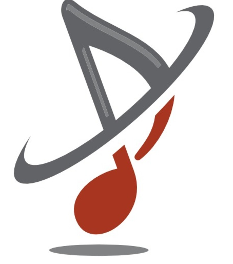 Logo_voice-design