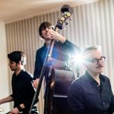 Cool Green Piano Trio; Bild von Tobias Ackermann